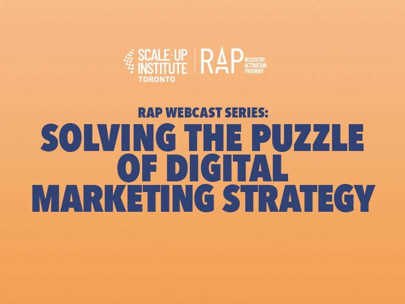 RAP Webcast Series: Solving the Puzzle of Digital Marketing Strategy Image